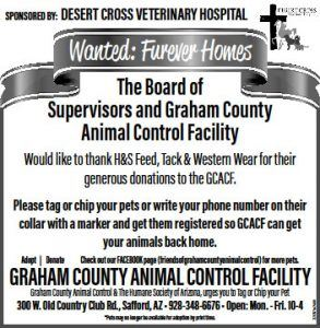 Desert Cross Veterinary Hospital Flyer
